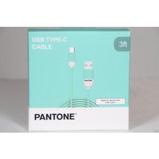 Pantone Cable Type-C USB 1m türkis